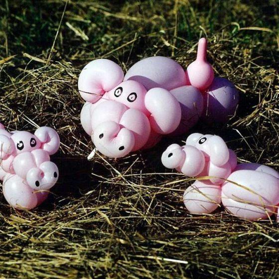 Ballonshow-Ballonfiguren-Schweine